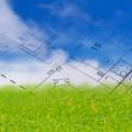 Скільки можна приватизувати земельних ділянок